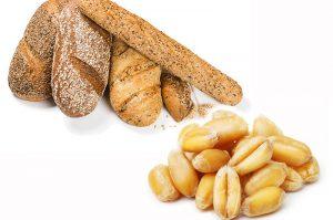 Read more about the article Gluten Wirkung – wie ungesund ist Getreide mit Gluten?